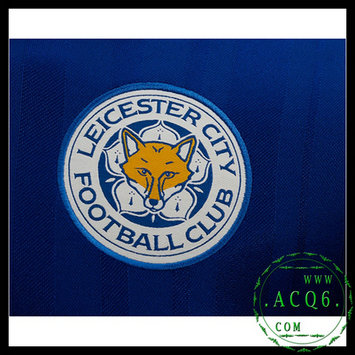 Leicester City Camisas 2016-2017 I MASCULINA