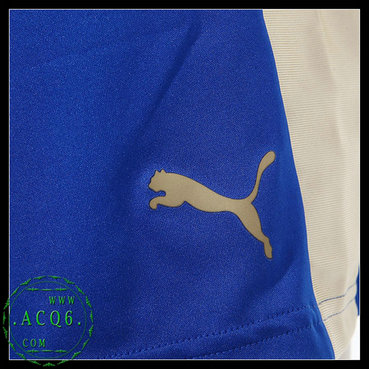 Sites De Camisas De Futebol Leicester City