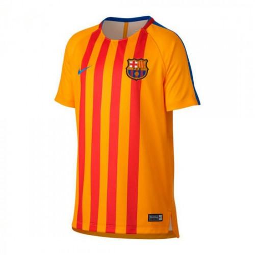 Desconto Camisola Nike FC Barcelona Pre-Match 2017-2018 Criança University  gold-Game royal 4c9d79da66069